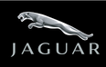 More Jaguar models